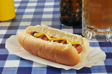 Grilled hot dog with mustard