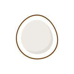 Stylish Coconut Isolated On White Background