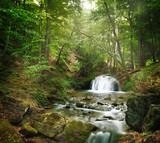 Fototapety forest waterfall