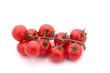 grappe de tomates