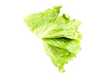 Frischer Eisberg Salat