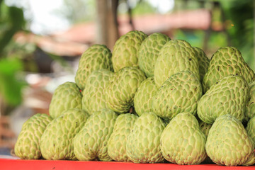 sugar apple in the market