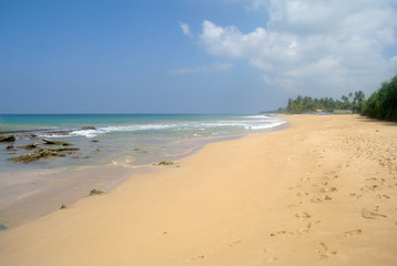 wild beach on Sri lanka coast