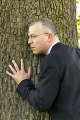 business man hugging a tree and listening