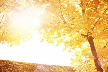 Romantische Herbstlandschaft