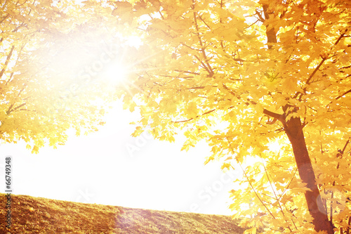 canvas print picture Romantische Herbstlandschaft