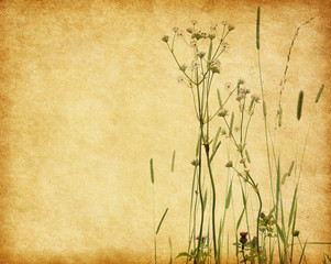 Grunge image with blooming wildflowers. Added paper texture