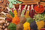 composition with different spices and herbs poster