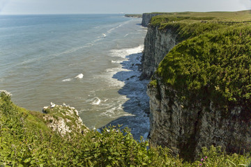 Cliff tops, Bempton cliffs, Yorkshire, Unitrd Kingdom.