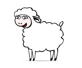 Smiling sheep