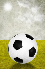 Soccer in field and sky background