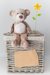 Blank sheet and a teddy bear on a basket