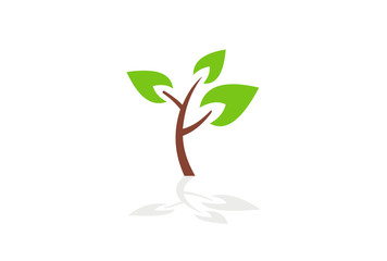 tree and leaf vector logo