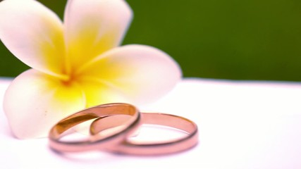 Close up wedding gold rings on Thai flowers frangipani. Macro