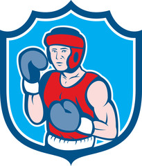 Amateur Boxer Stance Shield Cartoon