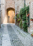 Strada storica con fiori