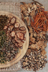 Traditional Chinese Herbal Medicine