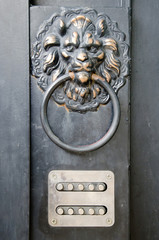The door handle - lion's head