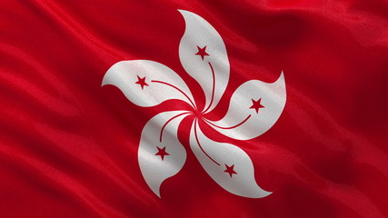 Flag of Hong Kong waving in the wind - seamless loop