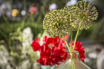 Blumen / Blumenstrauß / Gartenblumen / Tischblumen