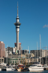 Auckland marina with Sky Tower
