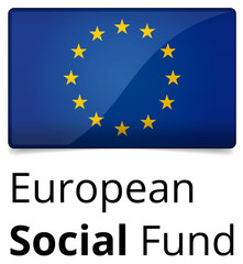 European Social Fund - standard and proprtional EU sign, glossy