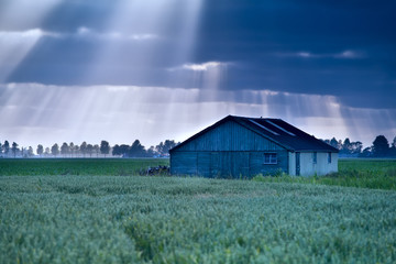 sunbeams over wooden hut on field