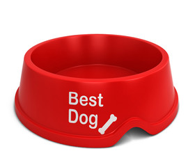 Best dog bowl