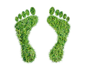 Green grass ecological footprint concept