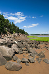 Fundy Shoreline