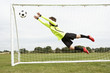 Boy goalkeeper jumping to save goal