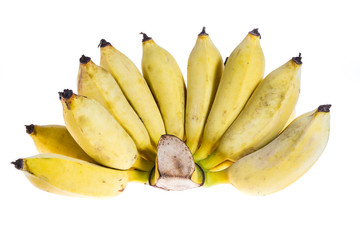 Cultivated banana isolated