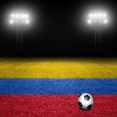 Colombian Soccer Field