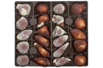 Sea Shell Pralines