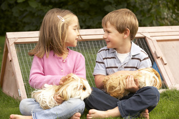 Young boy and girl in garden holding guinea pigs