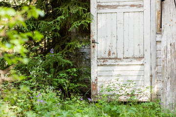 Open door of abandoned wooden house in the forest