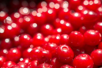 Colorful Display Of Red Cherries Close Up In Fruit Market