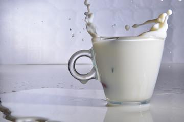 tuffi nel latte