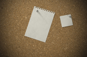 blank paper notes on a board