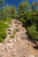 Montée sur le sentier, en montagne