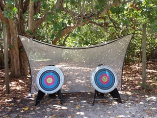Two Archery Targets