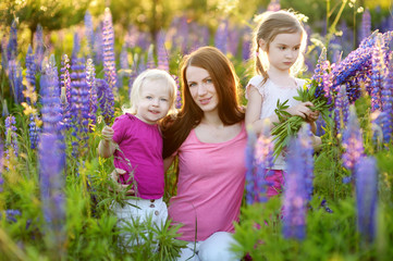 Two sisters and their mother in lupine field