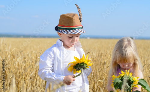 Little girl and boy examining yellow sunflowers