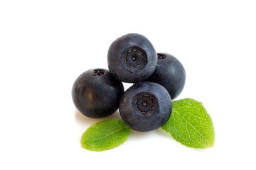 Bunch of blueberry berries isolated with leaves
