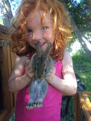 redhead and rabbit