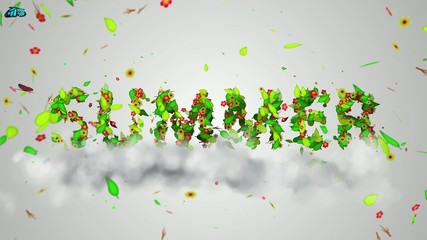Summer leaves particles Loop Animation