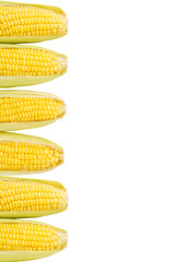 Corn on white isolated