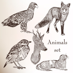 Set of hand drawn animals