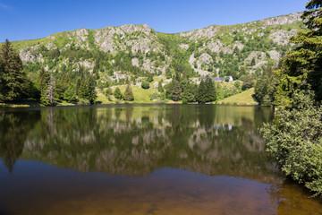 Lac en montagne et forêt - lac des truites