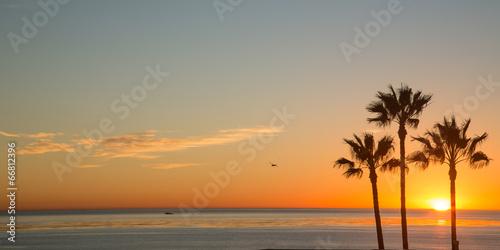 Landing in San Diego - 66812396